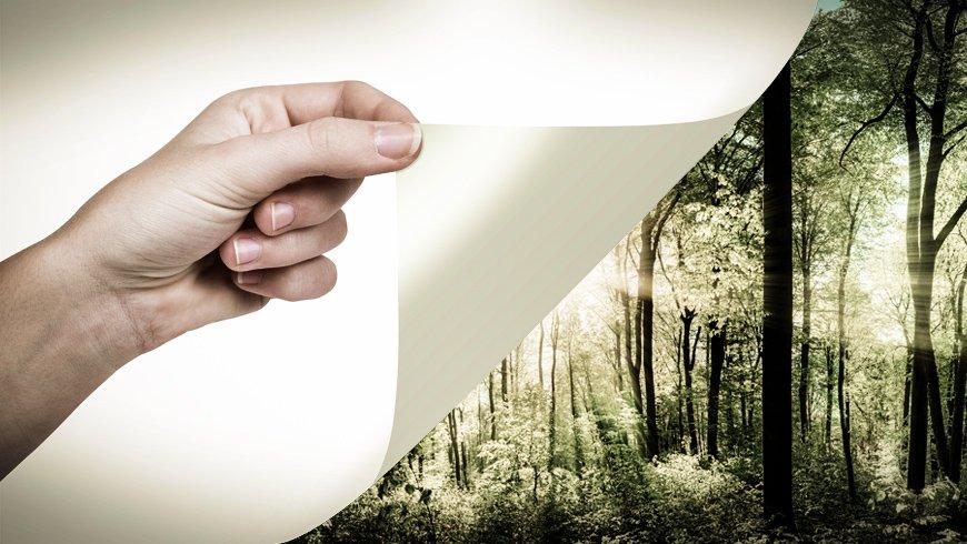 digital-printing-certificazione-fsc